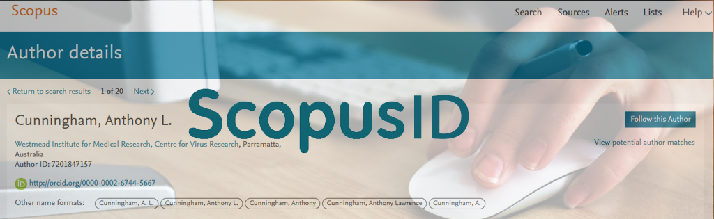 Tu perfil de autor en Scopus